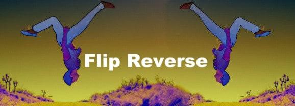 Flip Reverse